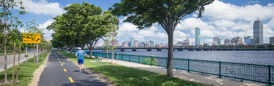 Charles River Conservancy Summer Memorial Drive