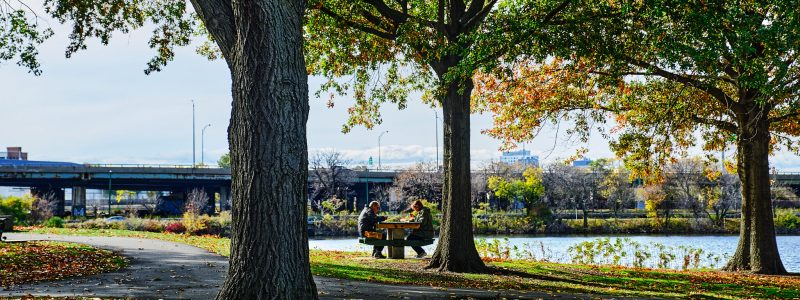 Photograph of Magazine Beach during the Fall. Two people sit at a picnic table in the park next to the Charles River.